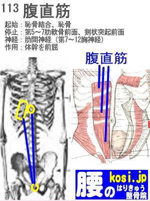 腹直筋、福岡太宰府、ぎっくり腰【腰痛専門】腰のはりきゅう整骨院