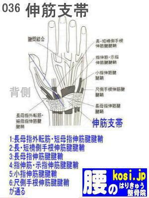 伸筋支帯、福岡 太宰府、ぎっくり腰【腰痛専門】こしの鍼灸整骨院
