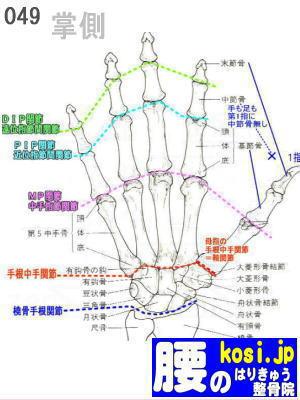 手掌、福岡太宰府、ぎっくり腰【腰痛専門】腰のはりきゅう整骨院