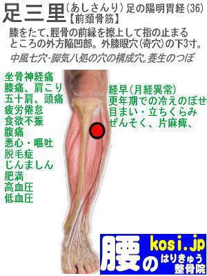 足三里、福岡太宰府、ぎっくり腰【腰痛専門】腰のはりきゅう整骨院
