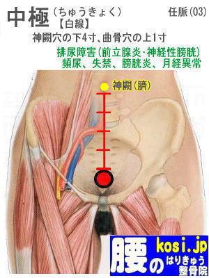 中極、ぎっくり腰【腰痛専門】腰のはりきゅう整骨院、福岡太宰府
