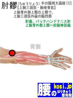 肘りょう、ぎっくり腰【腰痛専門】腰のはりきゅう整骨院、福岡太宰府