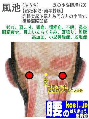 風池、ぎっくり腰【腰痛専門】腰のはりきゅう整骨院、福岡太宰府