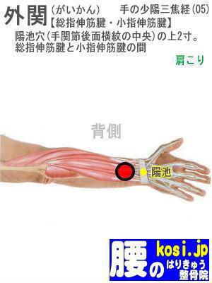 外関、ぎっくり腰【腰痛専門】腰のはりきゅう整骨院、福岡太宰府