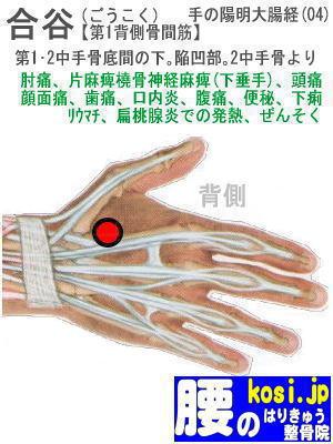 合谷、福岡太宰府、ぎっくり腰【腰痛専門】腰のはりきゅう整骨院
