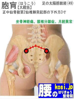 胞肓、福岡太宰府、ぎっくり腰【腰痛専門】腰のはりきゅう整骨院