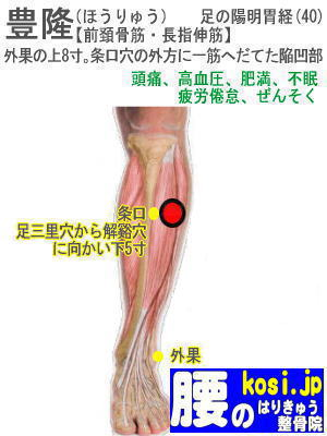 豊隆、福岡太宰府、ぎっくり腰【腰痛専門】腰のはりきゅう整骨院
