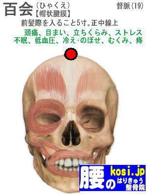 百会、福岡太宰府、大宰府 腰のはりきゅう整骨院
