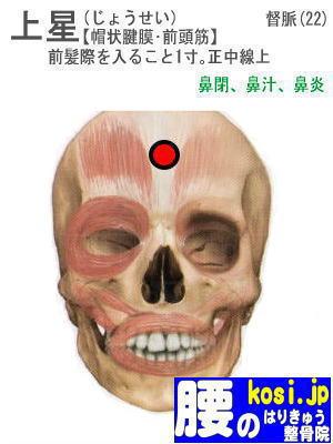 上星、福岡 太宰府 こしの鍼灸整骨院