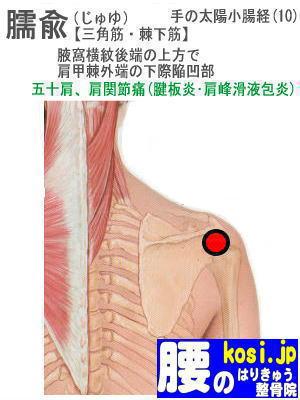 臑兪、福岡太宰府、ぎっくり腰【腰痛専門】腰のはりきゅう整骨院