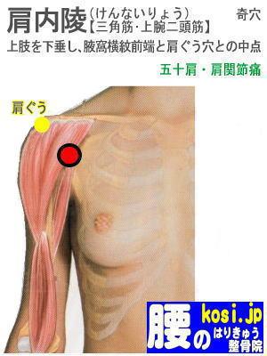 肩内陵、ぎっくり腰【腰痛専門】腰のはりきゅう整骨院、福岡太宰府