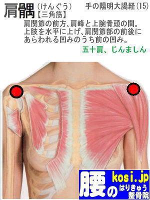 肩ぐう、福岡 太宰府 こしの鍼灸整骨院
