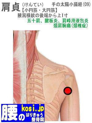 肩貞、ぎっくり腰【腰痛専門】腰のはりきゅう整骨院、福岡太宰府