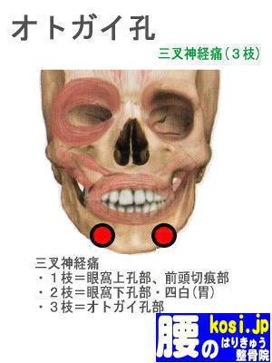 オトガイ、福岡太宰府、ぎっくり腰【腰痛専門】腰のはりきゅう整骨院