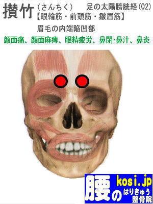 攅竹、ぎっくり腰【腰痛専門】腰のはりきゅう整骨院、福岡太宰府