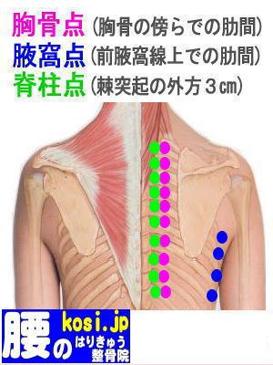 脊柱点、福岡太宰府、ぎっくり腰【腰痛専門】腰のはりきゅう整骨院