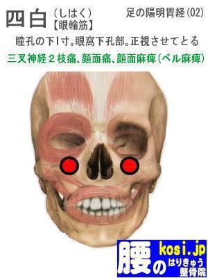 四白、福岡 太宰府 こしの鍼灸整骨院