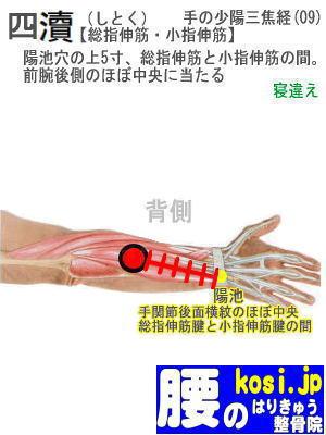 四とく、福岡太宰府、ぎっくり腰【腰痛専門】腰のはりきゅう整骨院