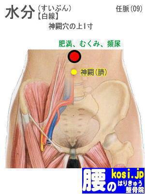 水分、福岡太宰府、ぎっくり腰【腰痛専門】腰のはりきゅう整骨院