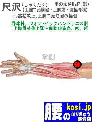尺沢、ぎっくり腰【腰痛専門】腰のはりきゅう整骨院、福岡太宰府
