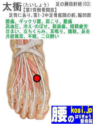 太衝、ぎっくり腰【腰痛専門】腰のはりきゅう整骨院、福岡太宰府