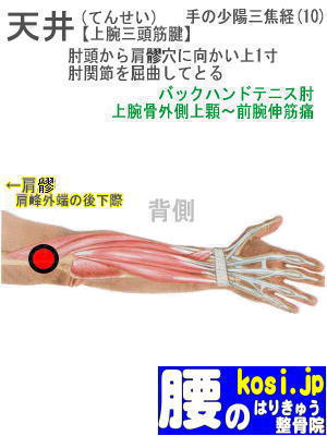 天井、福岡太宰府、ぎっくり腰【腰痛専門】腰のはりきゅう整骨院