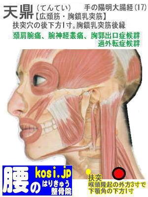 天鼎、福岡 太宰府 こしの鍼灸整骨院