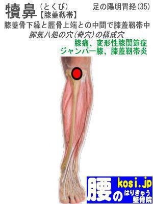 犢鼻、ぎっくり腰【腰痛専門】腰のはりきゅう整骨院、福岡太宰府